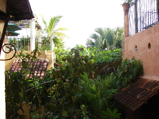 Casa Mexilio Guest House: Casa Mexilio 3