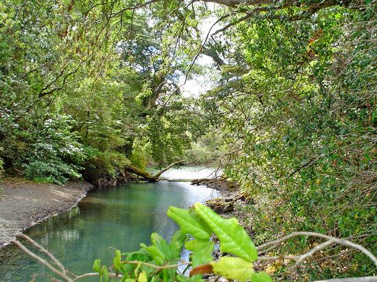 Puerto Montt, Chile: Inmediaciones del lago Llanquihue: agua y paisaje volcánico