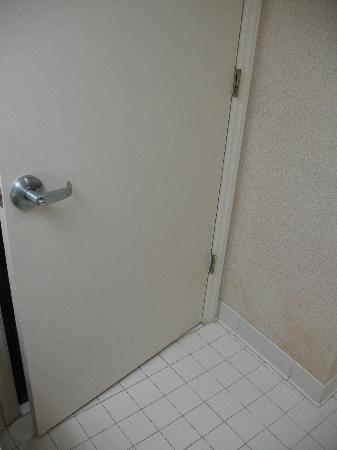 Holiday Inn Express Apex/Raleigh: King Bed Executive Bathroom 31
