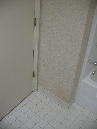 Holiday Inn Express Apex/Raleigh: King Bed Executive Bathroom 32