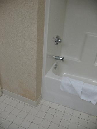 Holiday Inn Express Apex/Raleigh: King Bed Executive Bathroom 33
