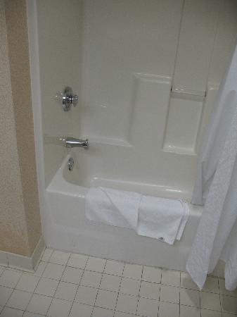 Holiday Inn Express Apex/Raleigh: King Bed Executive Bathroom 34