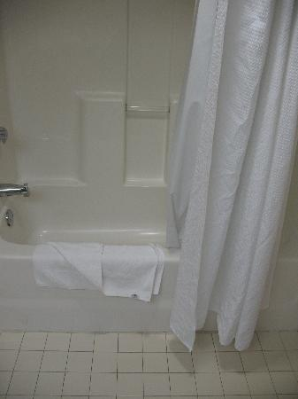 Holiday Inn Express Apex/Raleigh: King Bed Executive Bathroom 35
