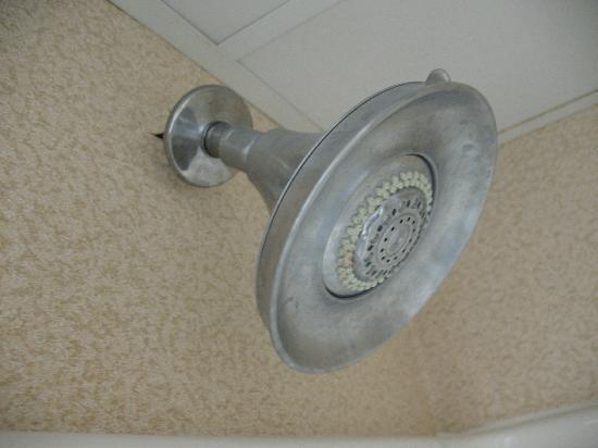 Holiday Inn Express Apex/Raleigh : King Bed Executive Bathroom 39
