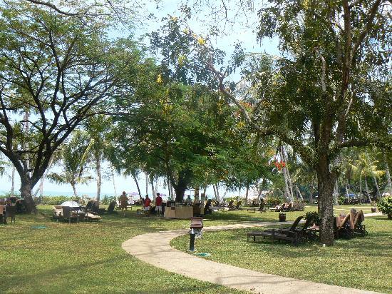 Shangri-La's Rasa Sayang Resort & Spa: RS Gardens - plenty of sunbeds