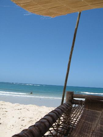 Ras Kutani: the view from my lounger!