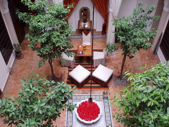 Riad Zolah: Looking down from our room onto yet more rose petals
