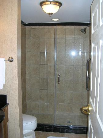 Holiday Inn Express Savannah-Historic District: our very nice shower!