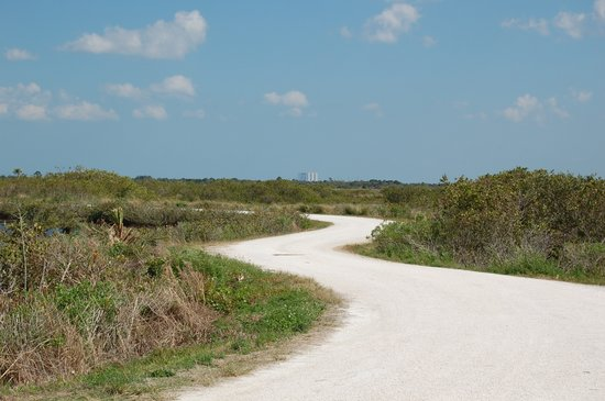 Merritt Island, Floryda: A Road in the Refuge