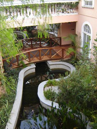 View of the koi pond and hotel entrance from the safari for Koi pond in house