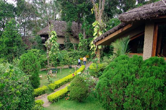 Club Mahindra Thekkady: Beautiful grounds
