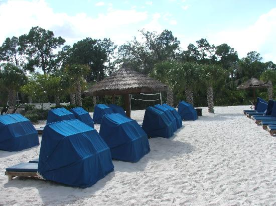 Picture Of Bahama Bay Resort Orlando