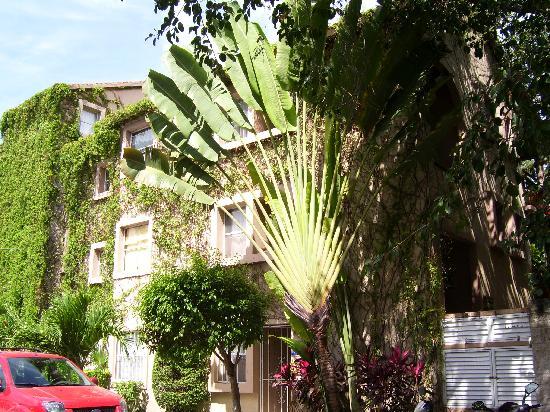 Hotel El Tukan: el tukan