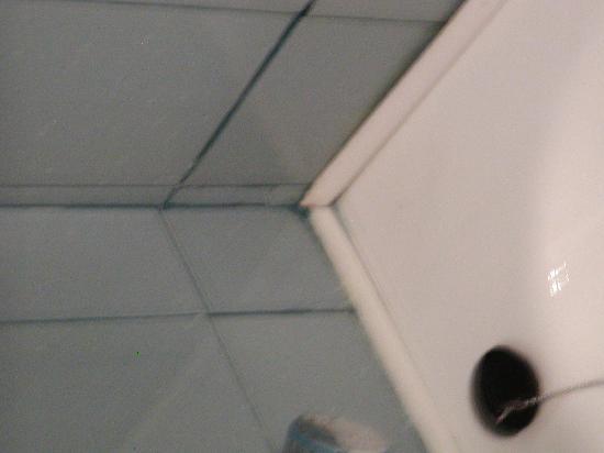 Hotel Eguzki Lore : Las juntas de los baldosines dan un poco de asco
