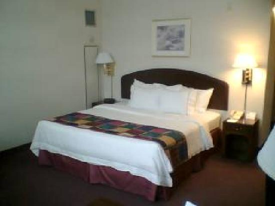 Courtyard by Marriott Omaha Downtown: Comfy King Sized Bed