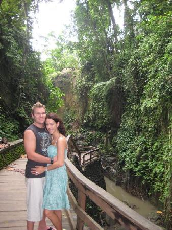 Bali, Indonesia: Monkey Forest in Ubud