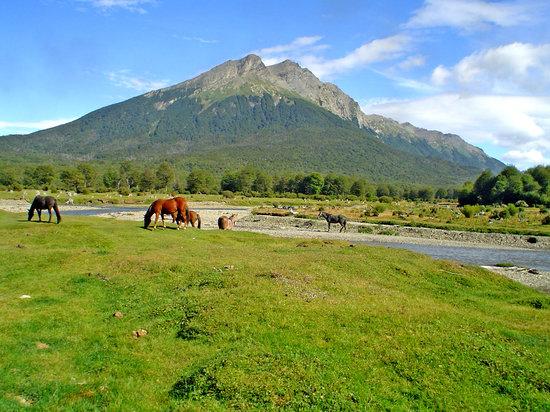 Ushuaia, Argentina: Parque Nacional Tierra del Fuego: vistas desde el tren del fin del mundo