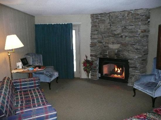 River Terrace Resort and Convention Center: lounging area and gas fireplace