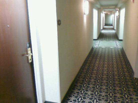 Hampton Inn Plano/North Dallas: Hampton Hallway - not too old...