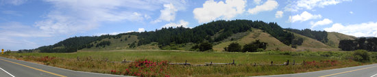 Elk, Californie : Meadow and hills across the street