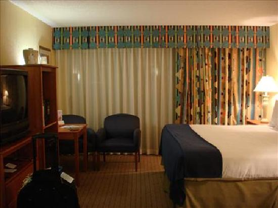 Comfort Inn Orlando/ Lake Buena Vista: Room