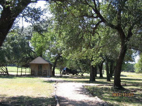 Foothills Safari Camp at Fossil Rim: Safari Camp; looking from tents