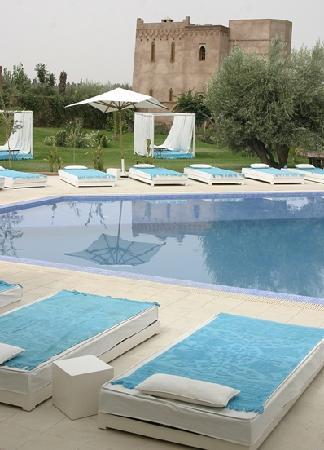 La Maison des Oliviers: superbe piscine