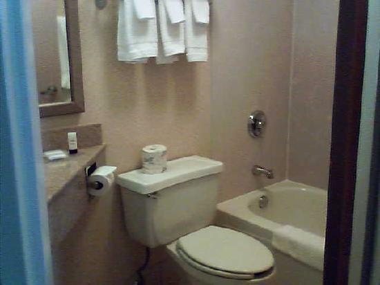 Fairfield Inn & Suites Merrillville : teeny, tiny bathroom!