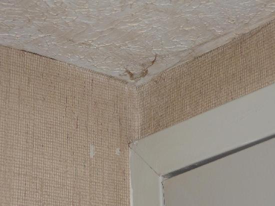 West Springfield, MA: Toile d'araignée