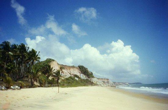 ترانكوسو: Acantilados sobre la playas - TRANCOSO (BRASIL)