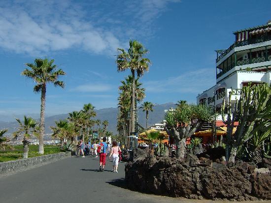 Optimist Aparthotel: Beach walk way