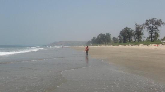 Osborne Resort Goa: Mandrem beach