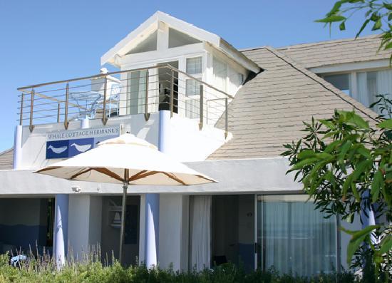Whale Cottage Hermanus: Aussenansicht