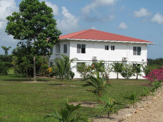 The Hummingbird Inn Belize : Hummingbird Inn
