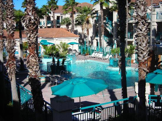 Staybridge Suites Lake Buena Vista: The pool