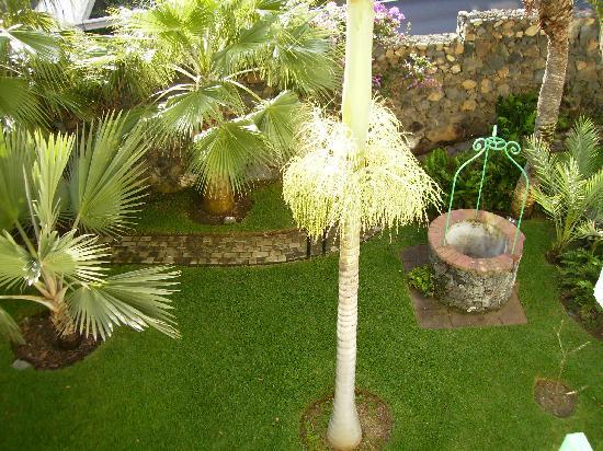 Hacienda San Jorge: Vista desde apartamento