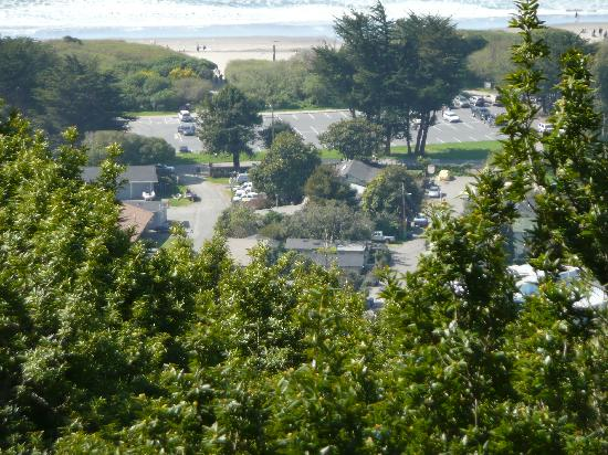 Stinson Beach, Califórnia: The Sandpiper is between the trees and the pick-up truck, close to the beach!