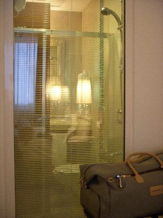 Gonluferah Thermal Hotel: Standard single with a view to the shower cabinet