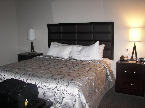 Twelve Centennial Park: King Bed-One Bedroom Deluxe