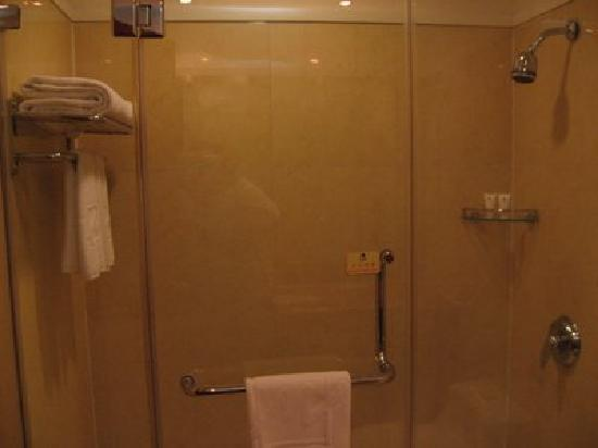 Metropark Hotel Shenzhen: Toilet