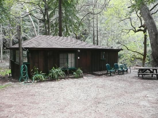 Ripplewood Resort: Our cabin down by the river
