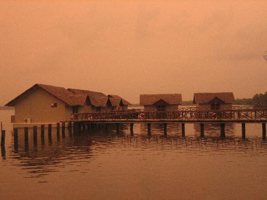 Emarald Pristine Island Floating Resort: floating cottages