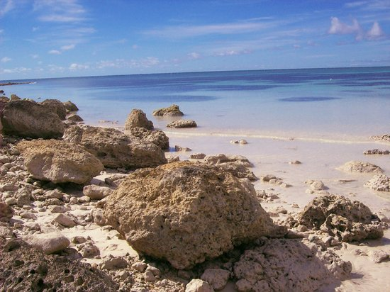 What to do and see in Freeport, Bahamas: The Best Places and Tips