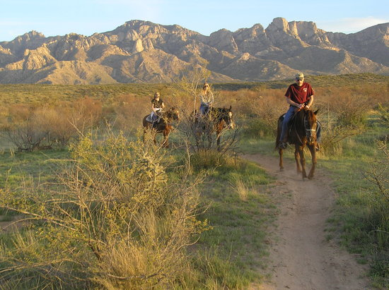 Tucson, AZ: Pusch Ridge Stable sunset trail ride
