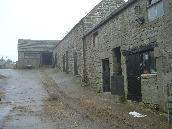Hearthstone Farm: Old stone barn