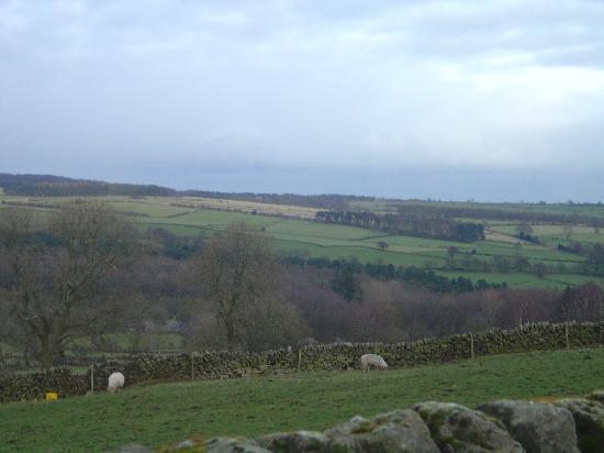 Hearthstone Farm: View from the farm