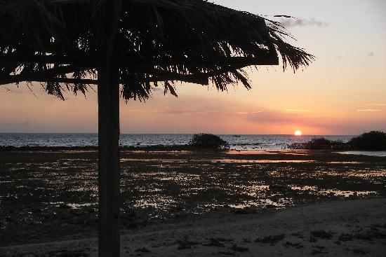 Laguna Beach Apartments: Sunset at the beach