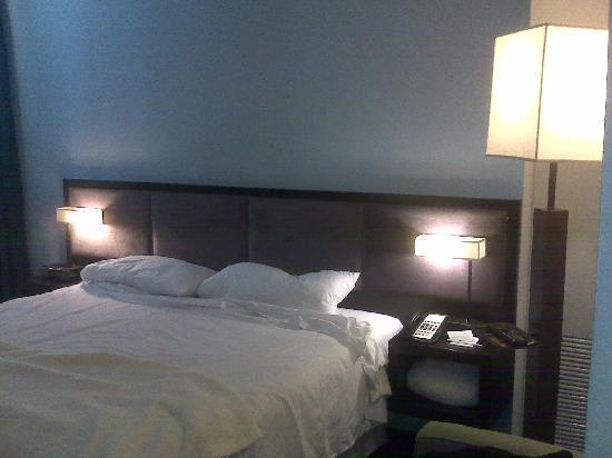 Dylan Hotel NYC: Habitación 803_vista cama 2