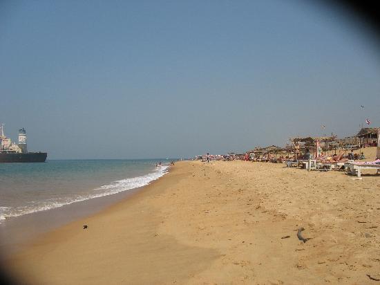 Don Hill Beach Resort : Candolim Beach