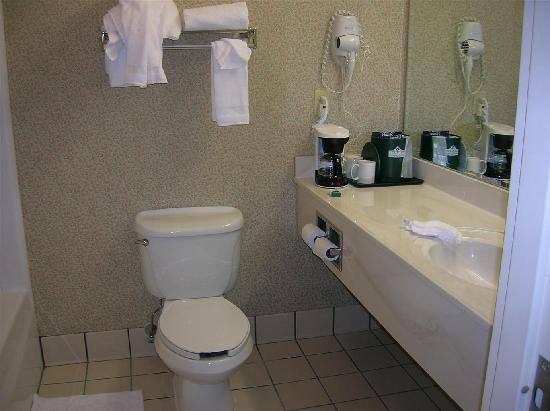 Country Inn & Suites By Carlson, Cortland: Our bathroom